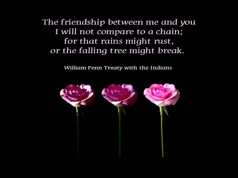 A Quote About Friendship Prepossessing 25 Shrewd Quotes About Friendship  Picshunger