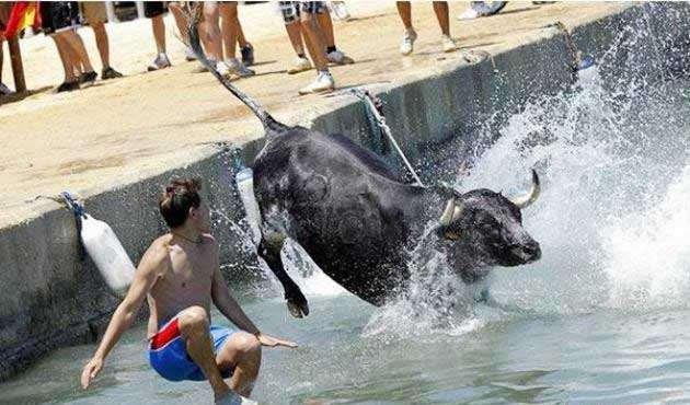 running of the bulls 2014