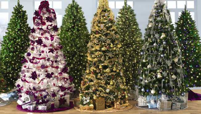 20 Hot Collection Of Christmas Tree Store
