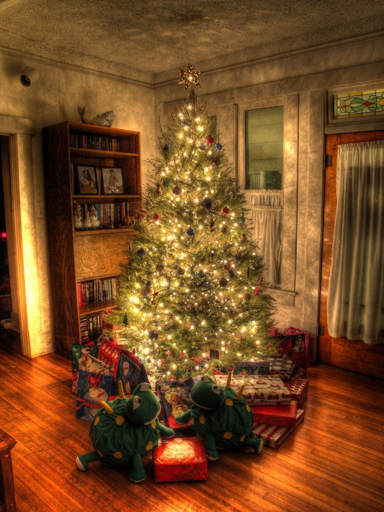 25 top the christmas tree shop ideas picshunger for The christmas store