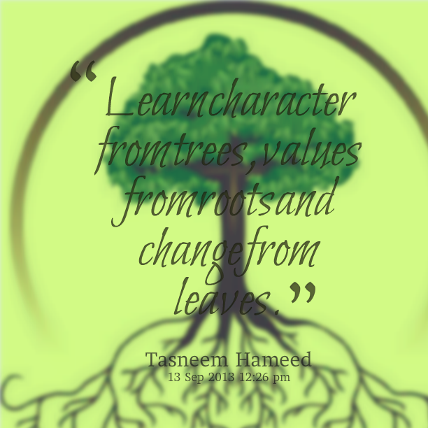 Quotes about values picshunger - Quotes About Values Picshunger